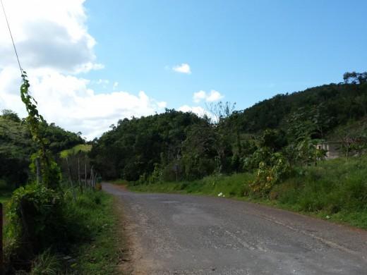 Jamaika 2015 (61)